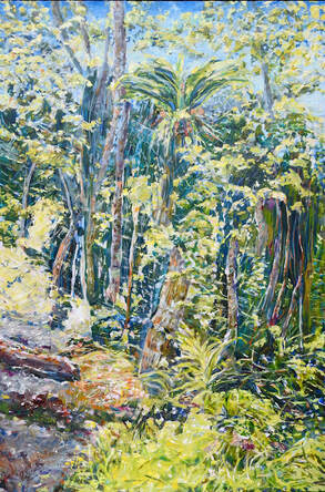Wet Tropics Rainforest by Pam Schultz