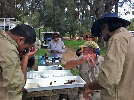 Mbabaram Traditional Owners at a water quality workshop